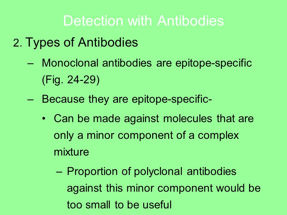 Detection with Antibodies 2. Types of Antibodies –Monoclonal antibodies are epitope-specific (Fig.