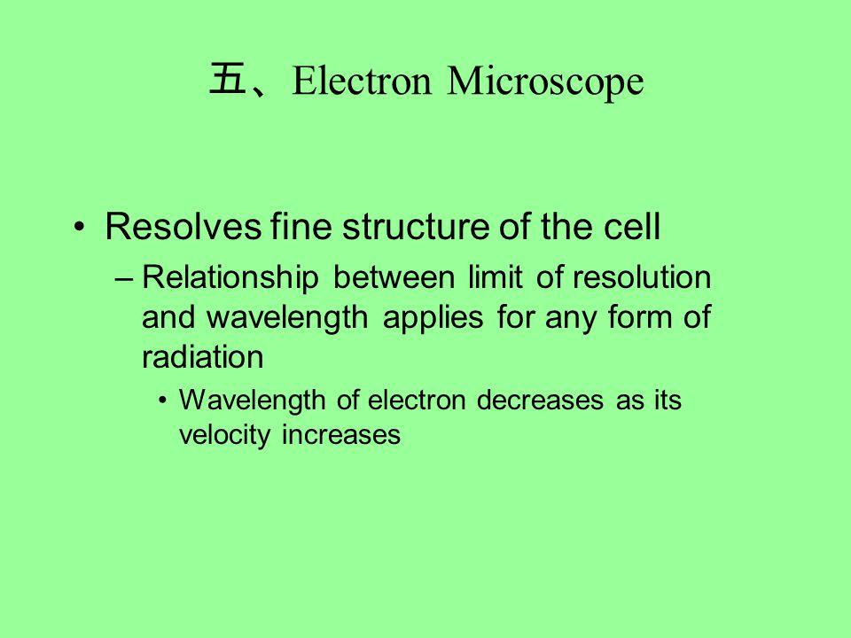 五、 Electron Microscope Resolves fine structure of the cell –Relationship between limit of resolution and wavelength applies for any form of radiation Wavelength of electron decreases as its velocity increases