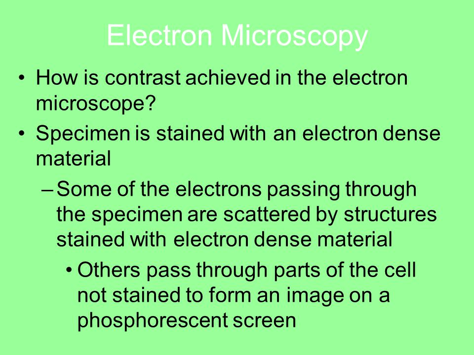 Electron Microscopy How is contrast achieved in the electron microscope.