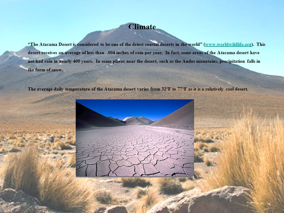 Climate The Atacama Desert is considered to be one of the driest coastal deserts in the world (www.worldwildlife.org).