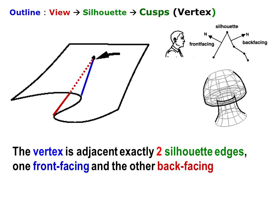 The vertex is adjacent exactly 2 silhouette edges, one front-facing and the other back-facing Outline : View  Silhouette  Cusps (Vertex)