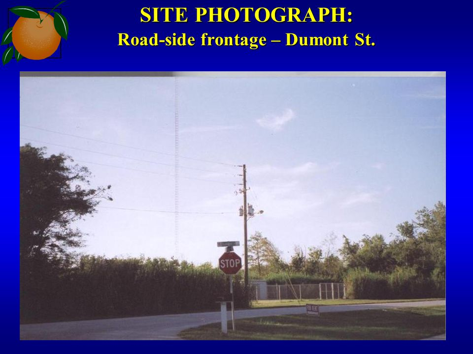 SITE PHOTOGRAPH: Road-side frontage – Dumont St.