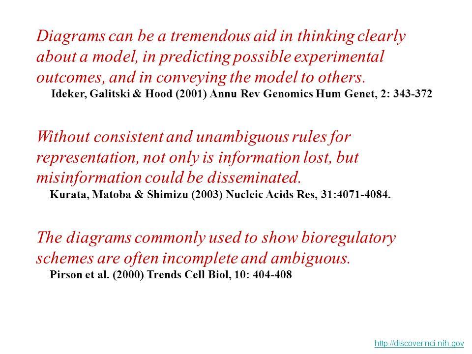 MARMOR, SKARIA, & YARDEN (2004) Int.J. Radiation Oncology Biol.