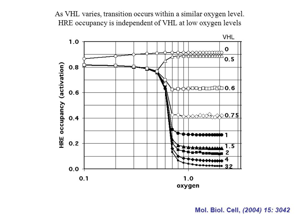 As VHL varies, transition occurs within a similar oxygen level.