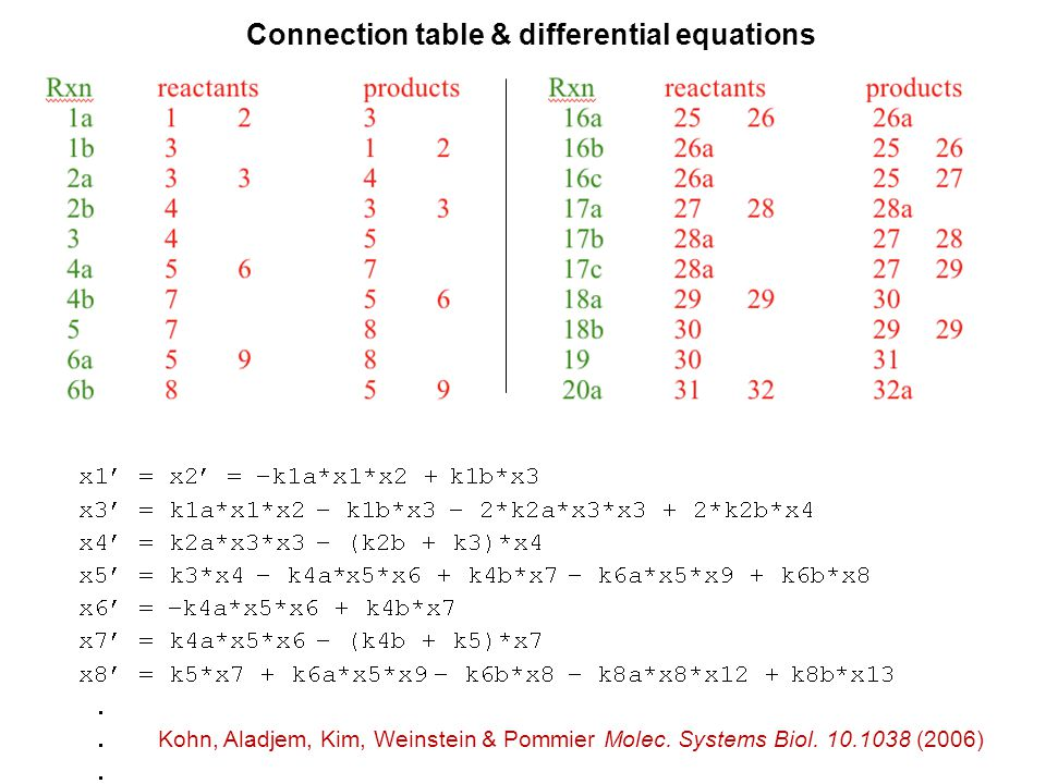 Connection table & differential equations Kohn, Aladjem, Kim, Weinstein & Pommier Molec.