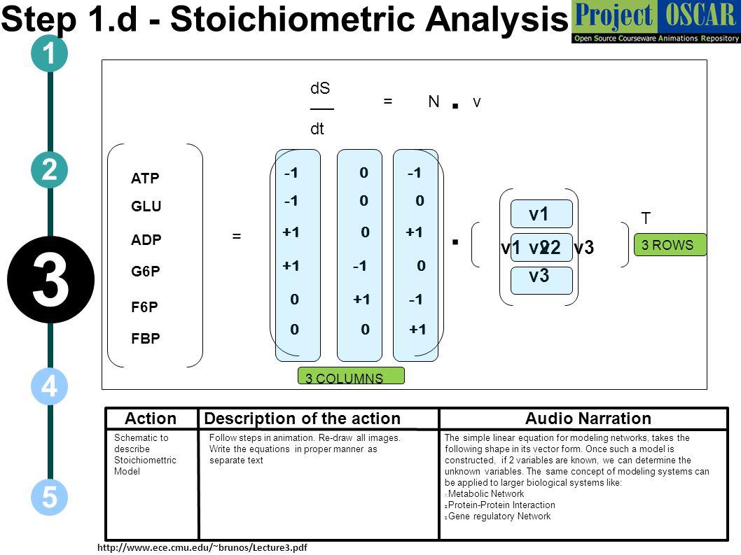 ActionAudio Narration 1 5 3 2 4 Description of the action dS ── dt Step 1.d - Stoichiometric Analysis N=. v ATP GLU ADP G6P F6P FBP = +1 0 0 0 0 0 +1