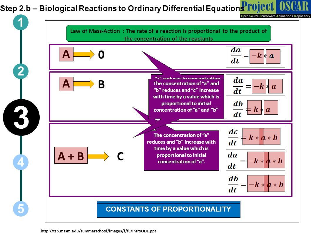 1 5 3 2 4 Step 2.b – Biological Reactions to Ordinary Differential Equations http://tsb.mssm.edu/summerschool/images/f/f0/IntroODE.ppt A 0 A B A + BC