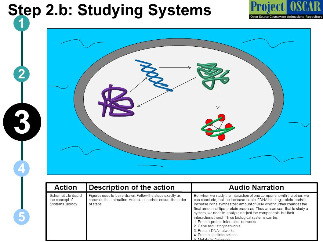 Step 2.b: Studying Systems ActionAudio Narration 1 5 3 2 4 Description of the action But when we study the interaction of one component with the other