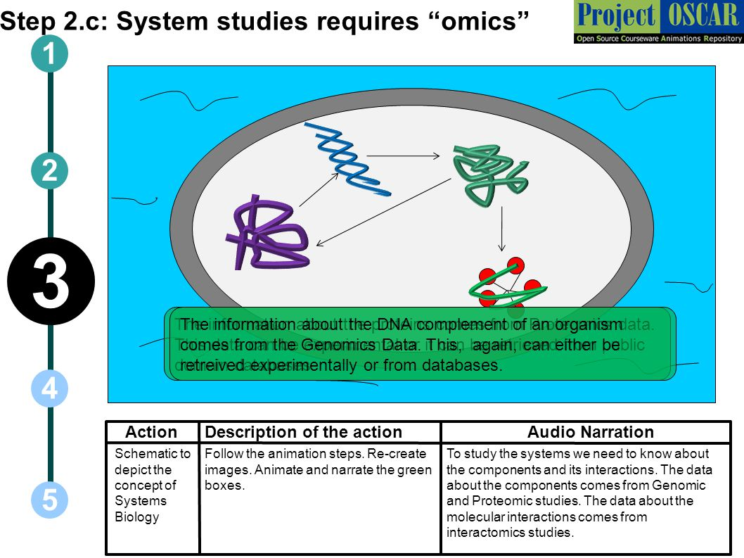 """Step 2.c: System studies requires """"omics"""" ActionAudio Narration 1 5 3 2 4 Description of the action To study the systems we need to know about the com"""