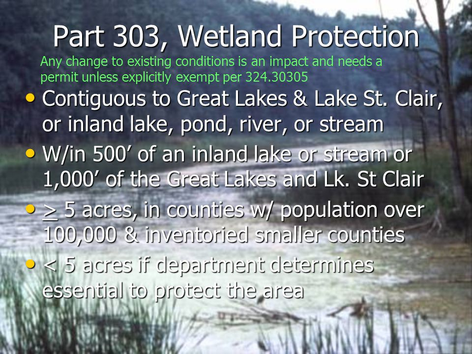 Part 303, Wetland Protection Contiguous to Great Lakes & Lake St.
