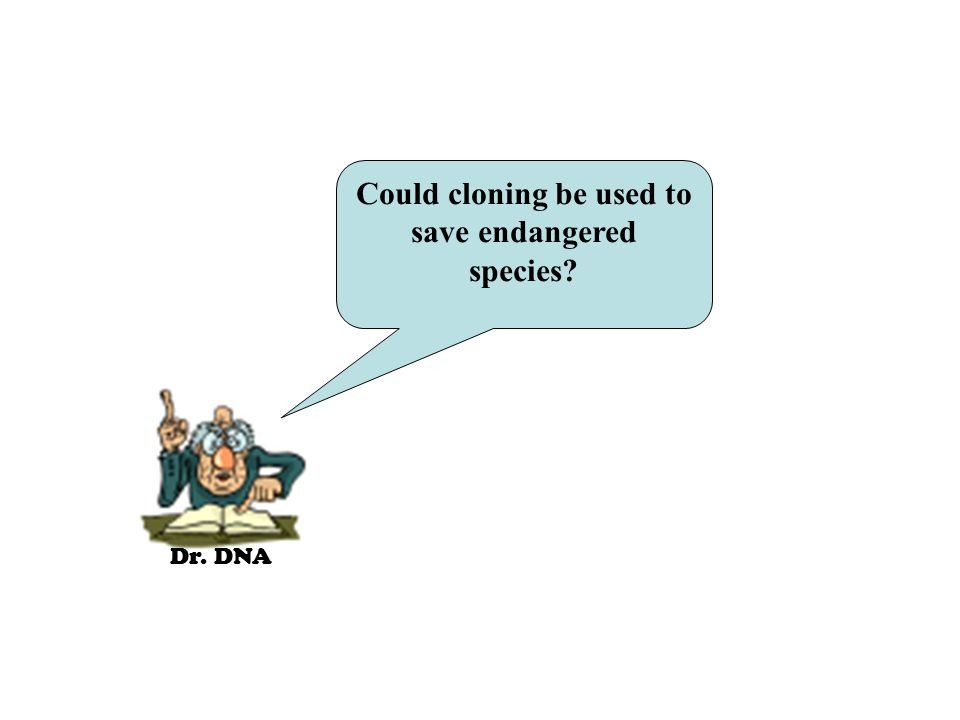 Dr. DNA Could cloning be used to save endangered species?