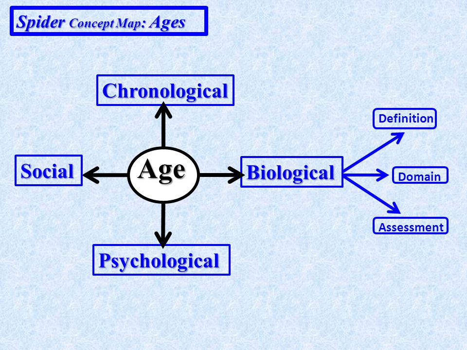 Systems Concept Map: Age Chronological Biological Psychological Social Referenced to Interacts with Definition Explained as Domain Delimits Assessment Basis for Definition Explained as Domain Assessment Delimits Basis for Definition Explained as Domain Assessment Delimits Basis for Definition Explained as Domain Assessment Incorporates Basis for Interacts with