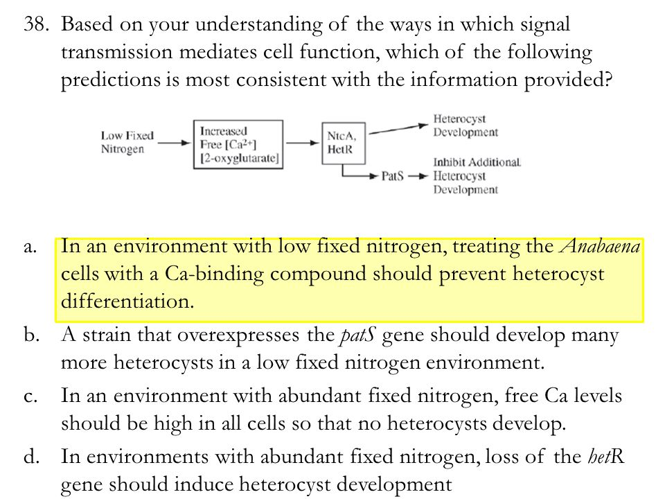 38.Based on your understanding of the ways in which signal transmission mediates cell function, which of the following predictions is most consistent