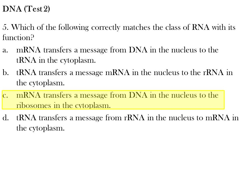 5. Which of the following correctly matches the class of RNA with its function? a.mRNA transfers a message from DNA in the nucleus to the tRNA in the