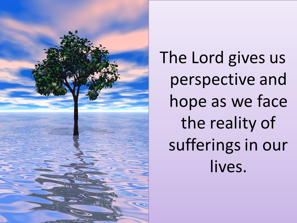 The Lord gives us perspective and hope as we face the reality of sufferings in our lives.