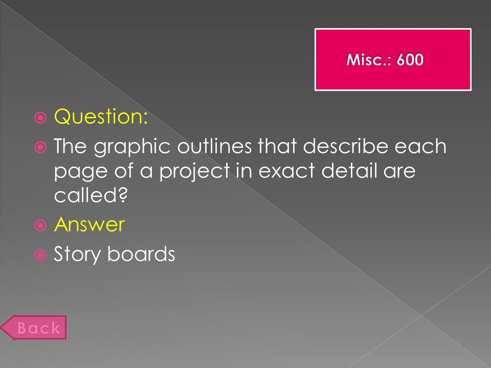  Question:  The graphic outlines that describe each page of a project in exact detail are called.
