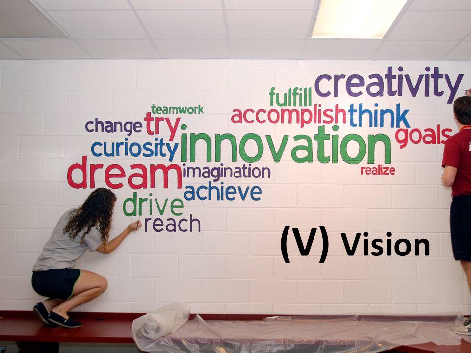 (V) Vision