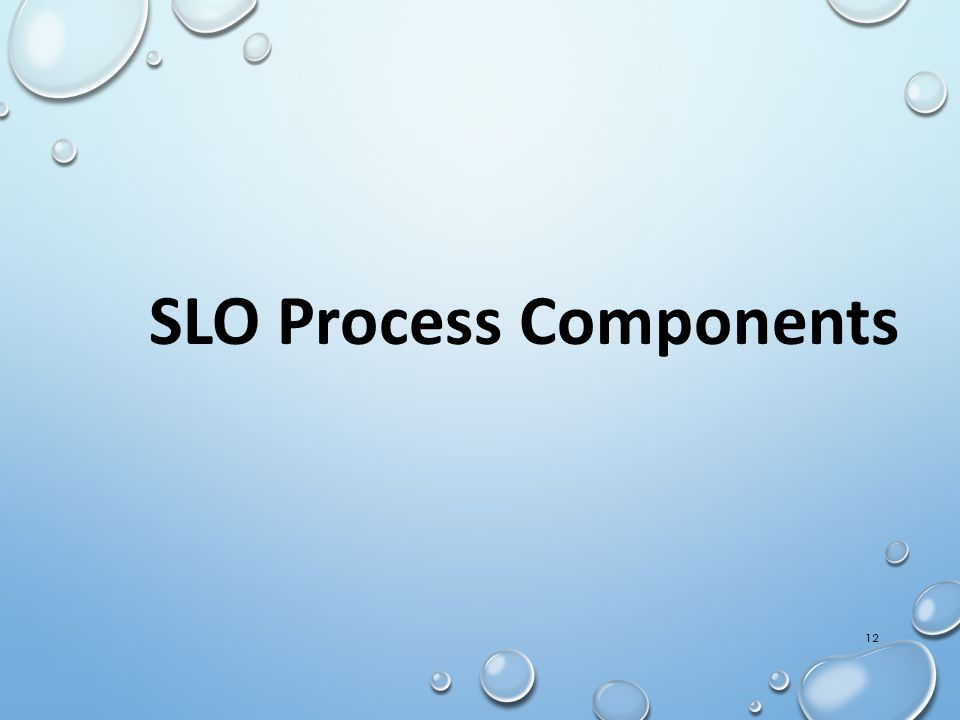 12 SLO Process Components