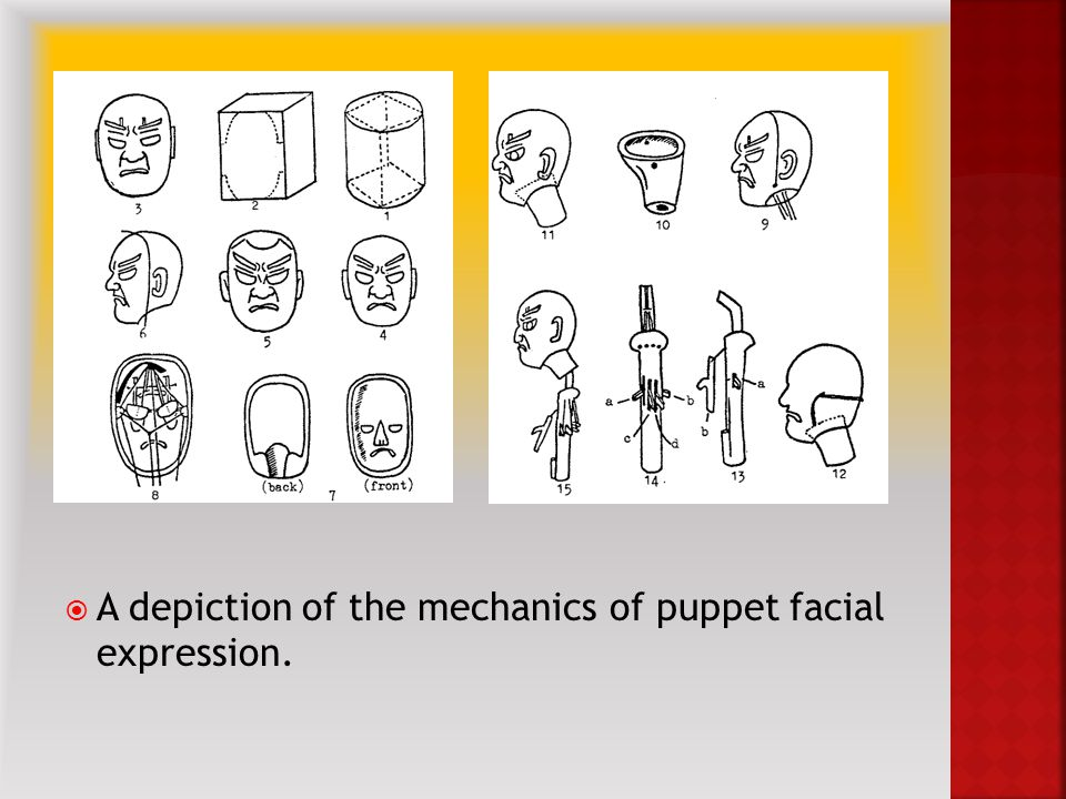  A depiction of the mechanics of puppet facial expression.