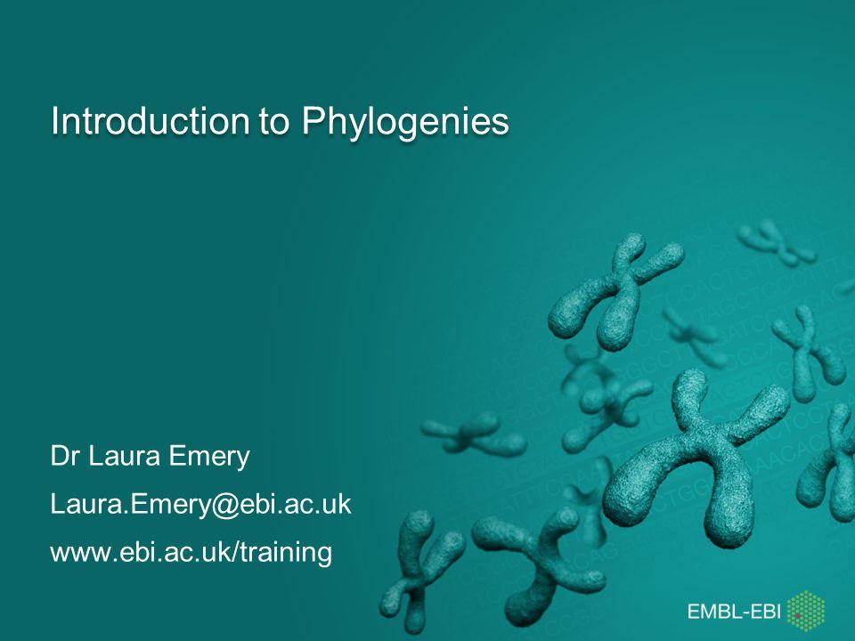 Introduction to Phylogenies Dr Laura Emery Laura.Emery@ebi.ac.uk www.ebi.ac.uk/training