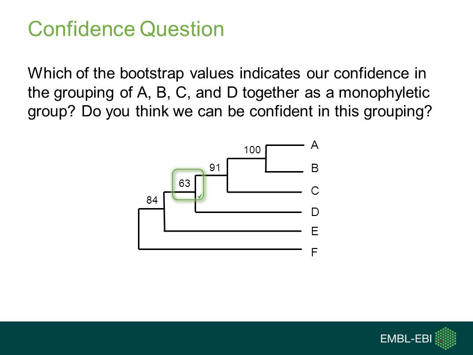 Confidence Question Which of the bootstrap values indicates our confidence in the grouping of A, B, C, and D together as a monophyletic group? Do you