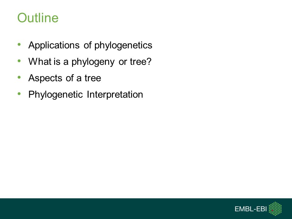 Outline Applications of phylogenetics What is a phylogeny or tree? Aspects of a tree Phylogenetic Interpretation