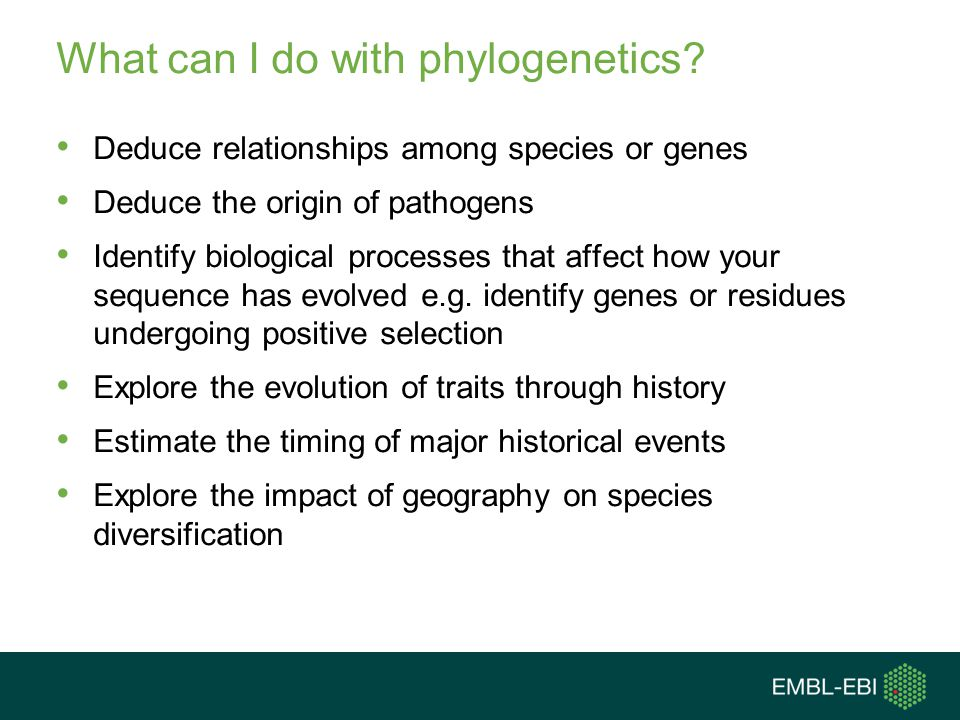 What can I do with phylogenetics? Deduce relationships among species or genes Deduce the origin of pathogens Identify biological processes that affect