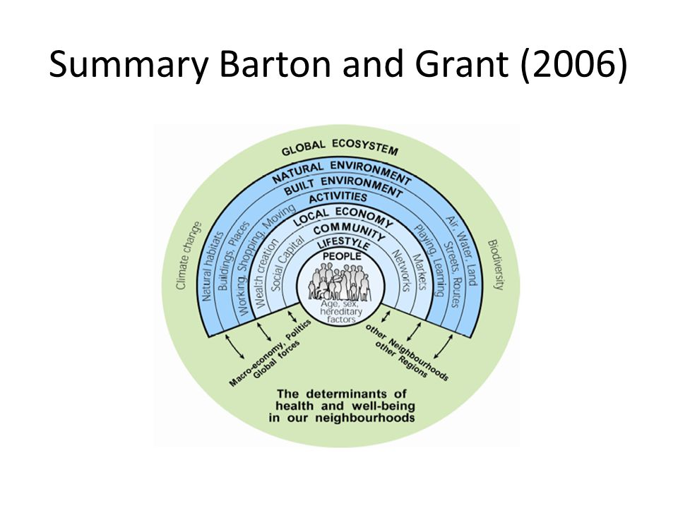 Summary Barton and Grant (2006)