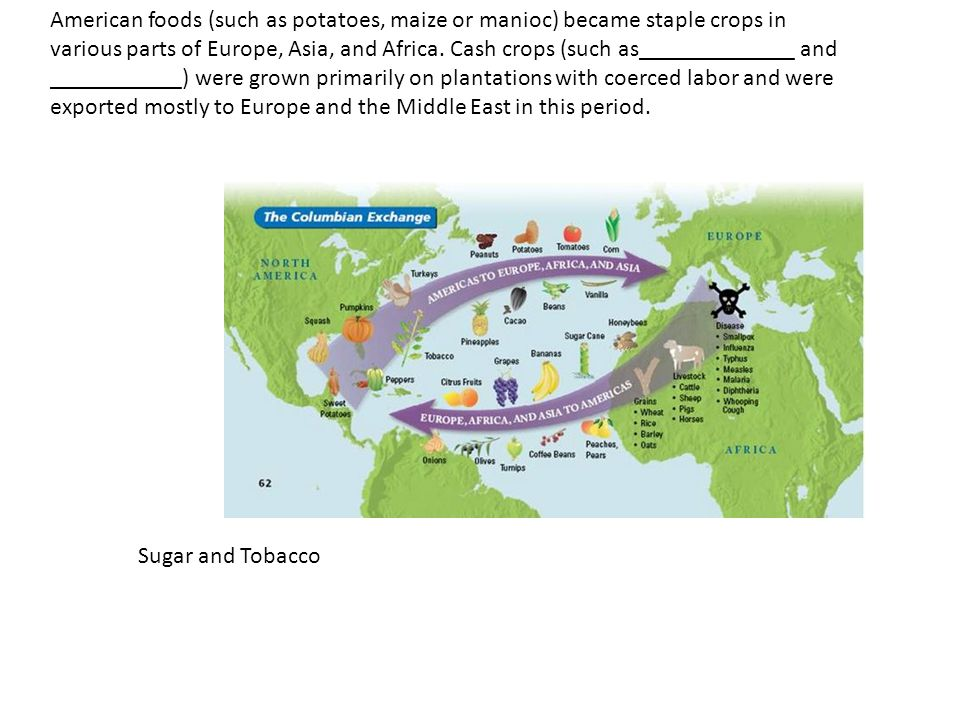 American foods (such as potatoes, maize or manioc) became staple crops in various parts of Europe, Asia, and Africa.