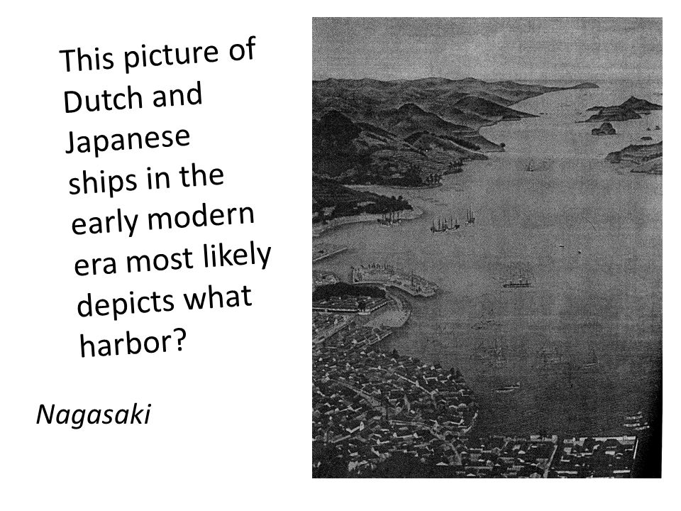 This picture of Dutch and Japanese ships in the early modern era most likely depicts what harbor.