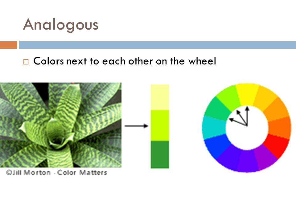 Analogous  Colors next to each other on the wheel