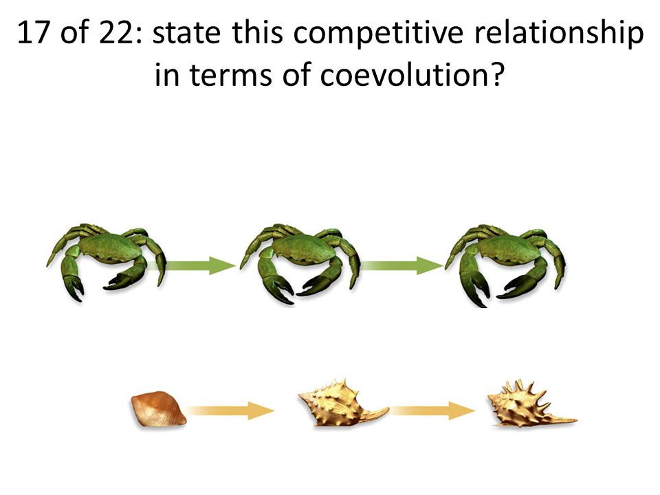 17 of 22: state this competitive relationship in terms of coevolution