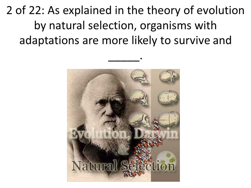 3 of 22: Darwin noticed that finches had different kinds of beaks in areas with different food sources.