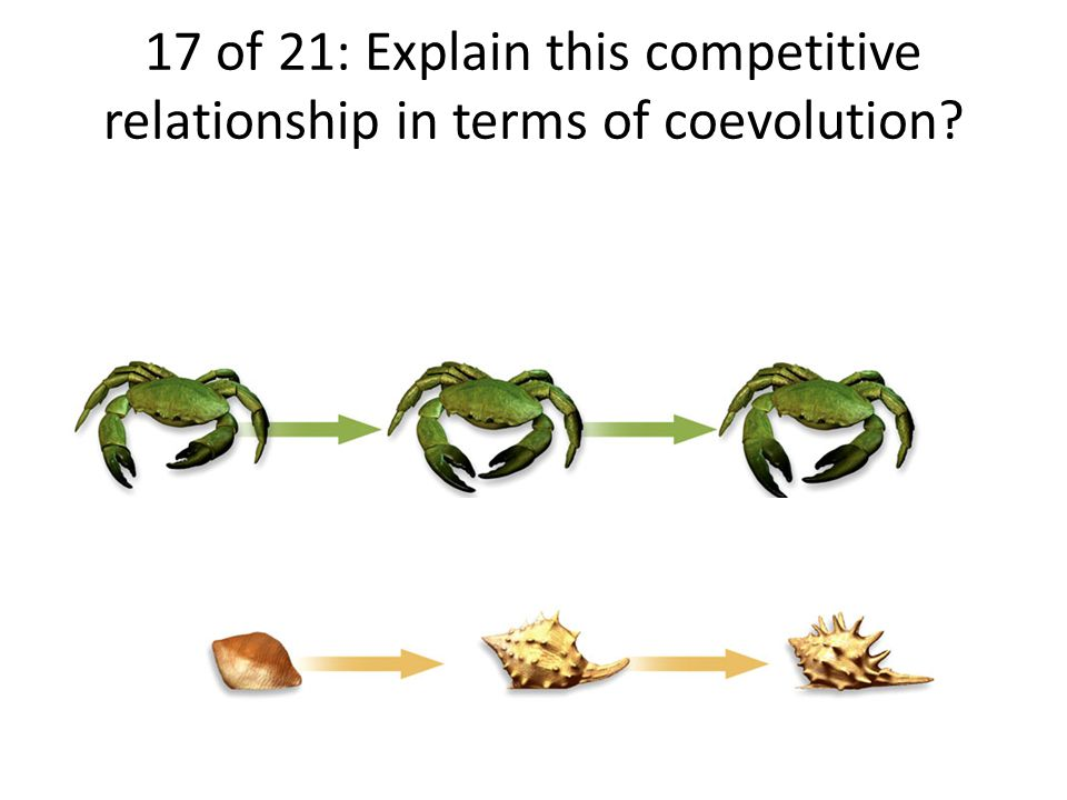 17 of 21: Explain this competitive relationship in terms of coevolution