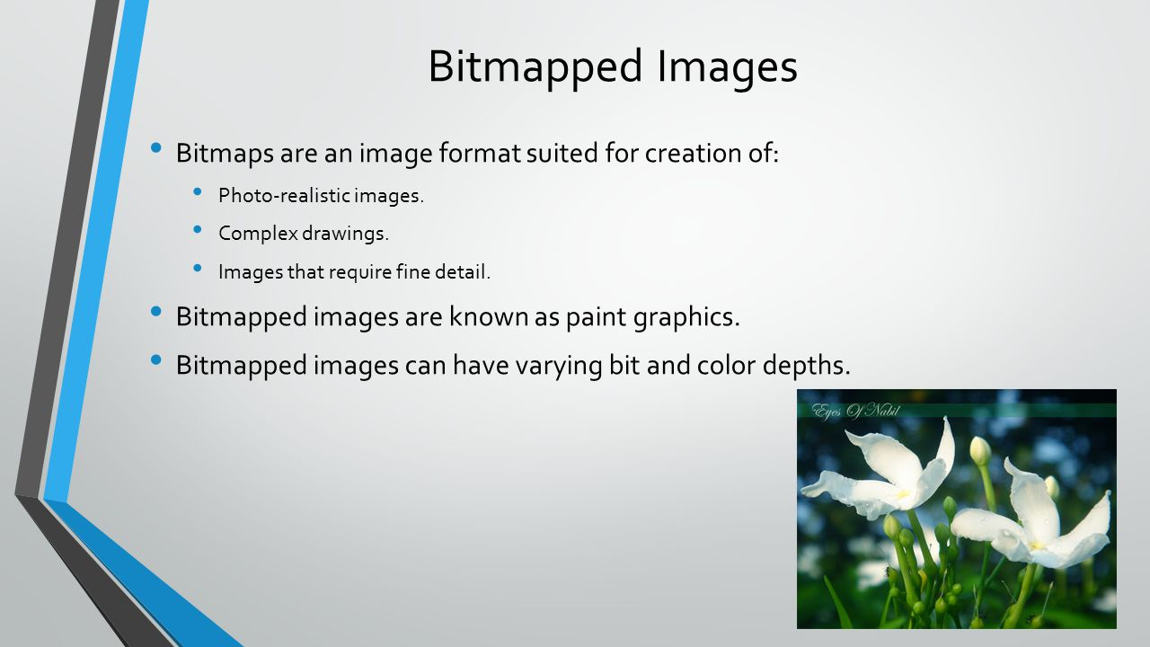 Bitmapped Images Bitmaps are an image format suited for creation of: Photo-realistic images.
