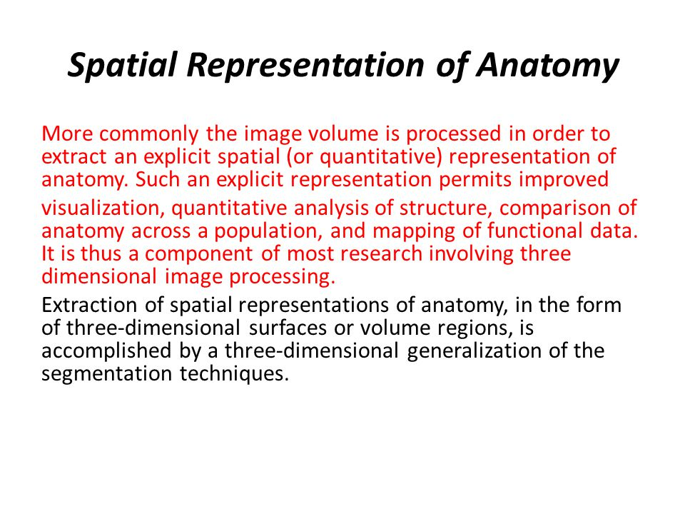 Spatial Representation of Anatomy More commonly the image volume is processed in order to extract an explicit spatial (or quantitative) representation of anatomy.