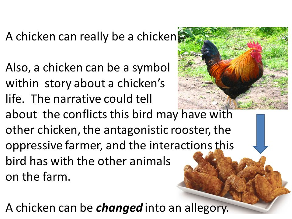 A chicken can really be a chicken. Also, a chicken can be a symbol within story about a chicken's life. The narrative could tell about the conflicts t