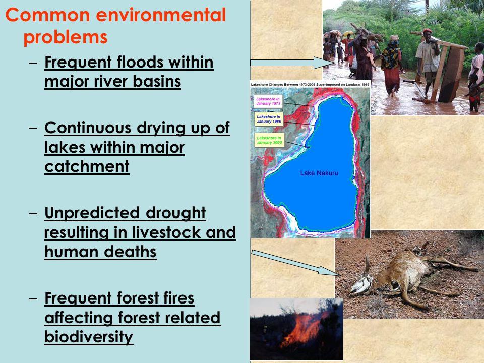 Common environmental problems – Frequent floods within major river basins – Continuous drying up of lakes within major catchment – Unpredicted drought resulting in livestock and human deaths – Frequent forest fires affecting forest related biodiversity