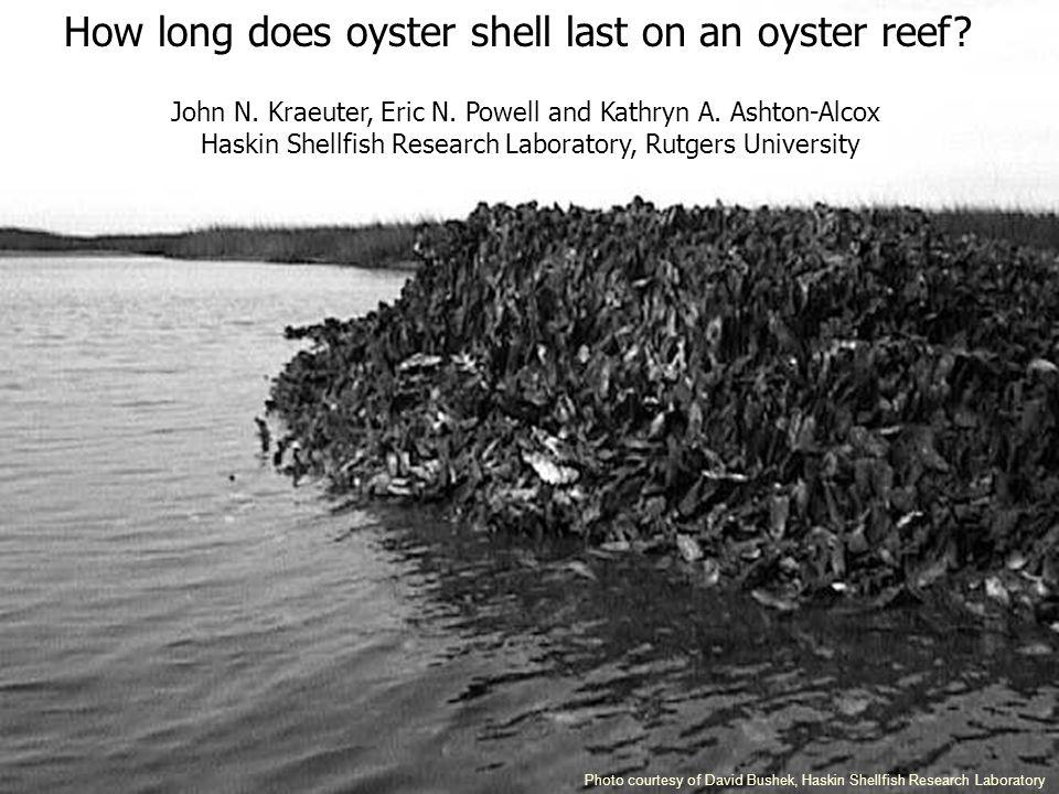 Photo courtesy of David Bushek, Haskin Shellfish Research Laboratory