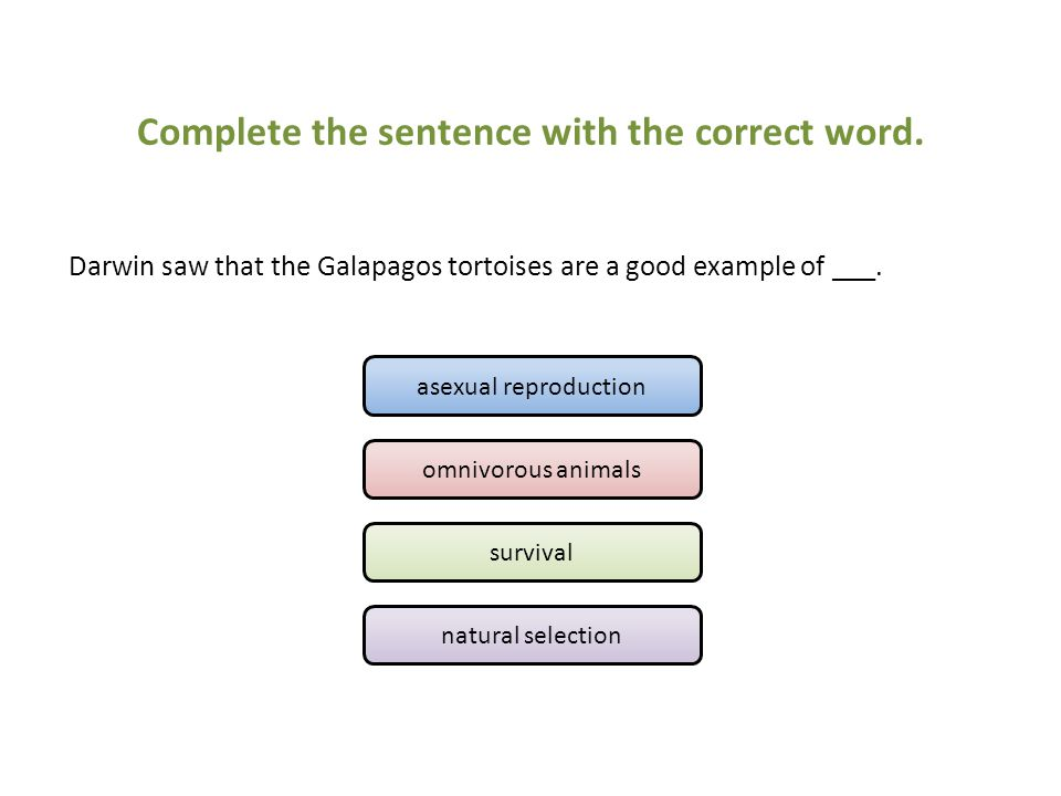 Complete the sentence with the correct word. asexual reproduction omnivorous animals survival natural selection Darwin saw that the Galapagos tortoise