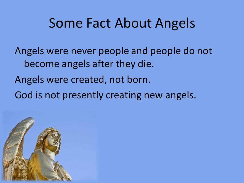 Some Fact About Angels Though angels sometime appear to be men the Bible does not depict angels in the form of children or women.