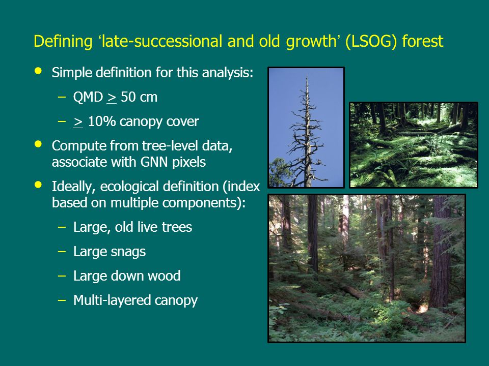 Defining 'late-successional and old growth' (LSOG) forest Simple definition for this analysis: –QMD > 50 cm –> 10% canopy cover Compute from tree-level data, associate with GNN pixels Ideally, ecological definition (index based on multiple components): –Large, old live trees –Large snags –Large down wood –Multi-layered canopy