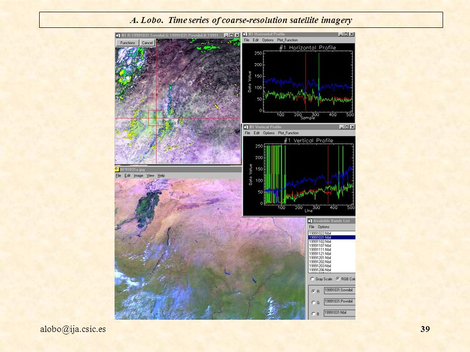 alobo@ija.csic.es A. Lobo. Time series of coarse-resolution satellite imagery 39