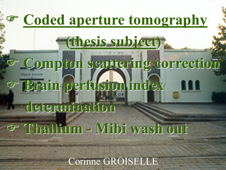 Groiselle C., Rocchisani J.-M., Moretti J.-L., Paré C.1 Corinne GROISELLE  Coded aperture tomography (thesis subject) (thesis subject)  Compton scattering correction  Brain perfusion index determination  Thallium - Mibi wash out