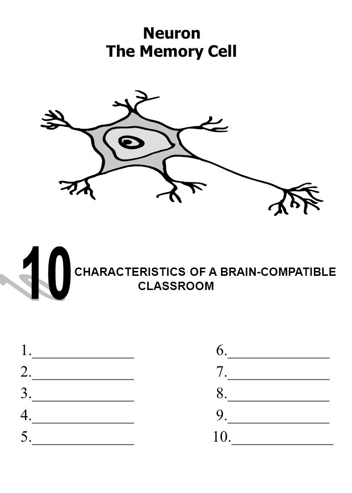 1._____________ 6._____________ 2._____________ 7._____________ 3._____________ 8._____________ 4._____________ 9._____________ 5._____________ 10._____________ CHARACTERISTICS OF A BRAIN-COMPATIBLE CLASSROOM Neuron The Memory Cell