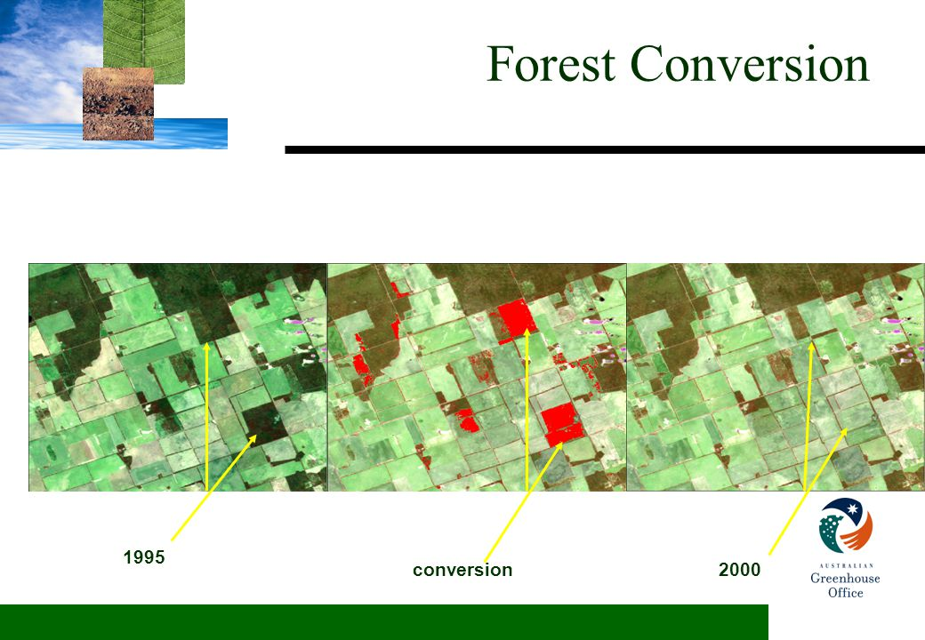 Forest Conversion 1995 2000conversion