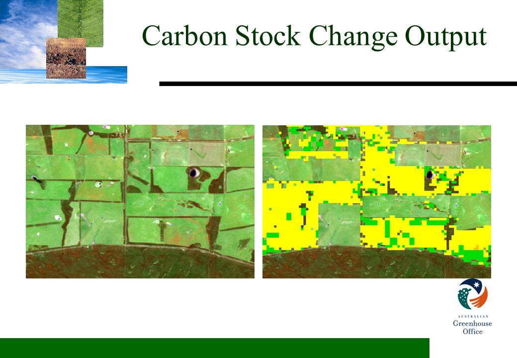 Carbon Stock Change Output