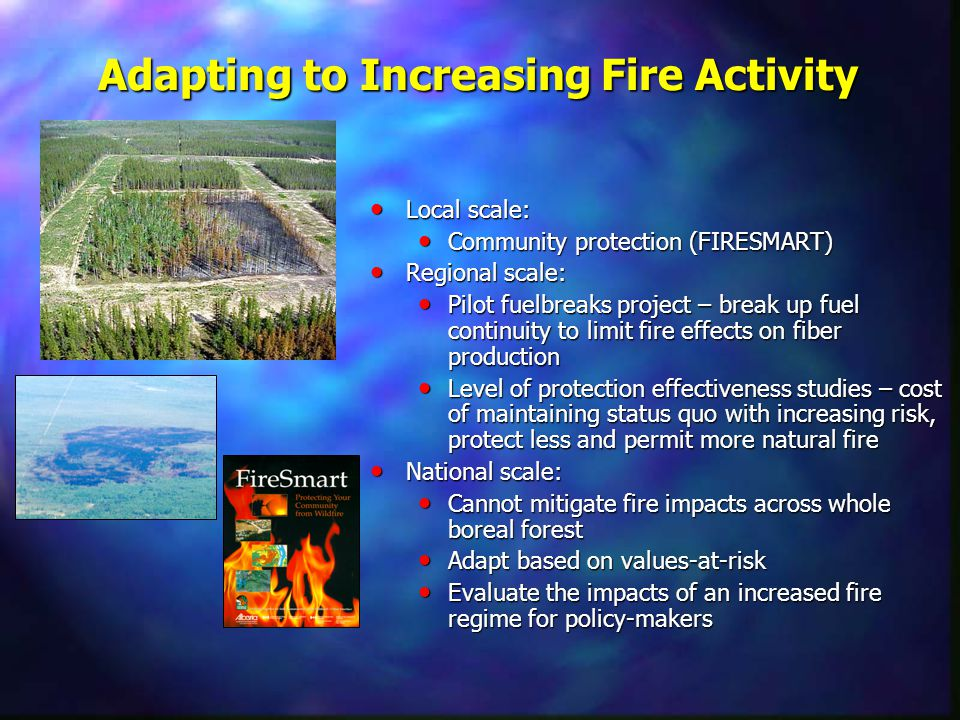 Adapting to Increasing Fire Activity Local scale: Local scale: Community protection (FIRESMART) Community protection (FIRESMART) Regional scale: Regional scale: Pilot fuelbreaks project – break up fuel continuity to limit fire effects on fiber production Pilot fuelbreaks project – break up fuel continuity to limit fire effects on fiber production Level of protection effectiveness studies – cost of maintaining status quo with increasing risk, protect less and permit more natural fire Level of protection effectiveness studies – cost of maintaining status quo with increasing risk, protect less and permit more natural fire National scale: National scale: Cannot mitigate fire impacts across whole boreal forest Cannot mitigate fire impacts across whole boreal forest Adapt based on values-at-risk Adapt based on values-at-risk Evaluate the impacts of an increased fire regime for policy-makers Evaluate the impacts of an increased fire regime for policy-makers