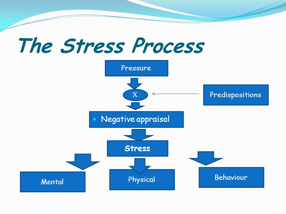 The Stress Process Behaviour X Negative appraisal Physica l Mental Pressure Stress Predispositions