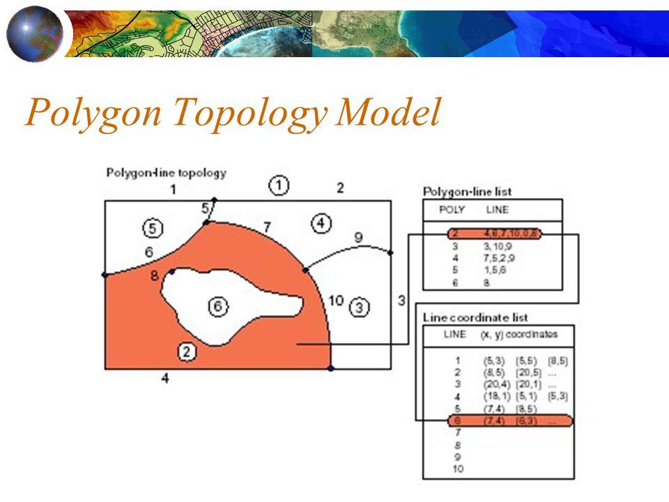 Polygon Topology Model